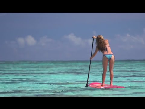 Paddleboarding with Sharks and Stingrays in Tahiti