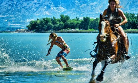 WakeSurfing with Horses!