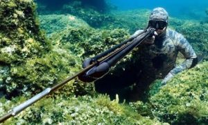 Spearfishing Top 10 Mediterranean Best shots – DIMOS ADAMIS