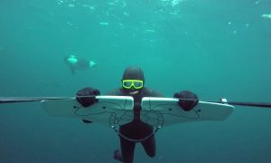 GoPro Awards: Soaring with Orcas [Awesome]