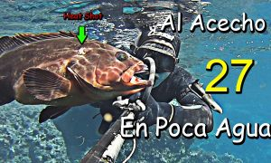 Pesca Submarina – Al ACECHO XIII por SHARK.tv